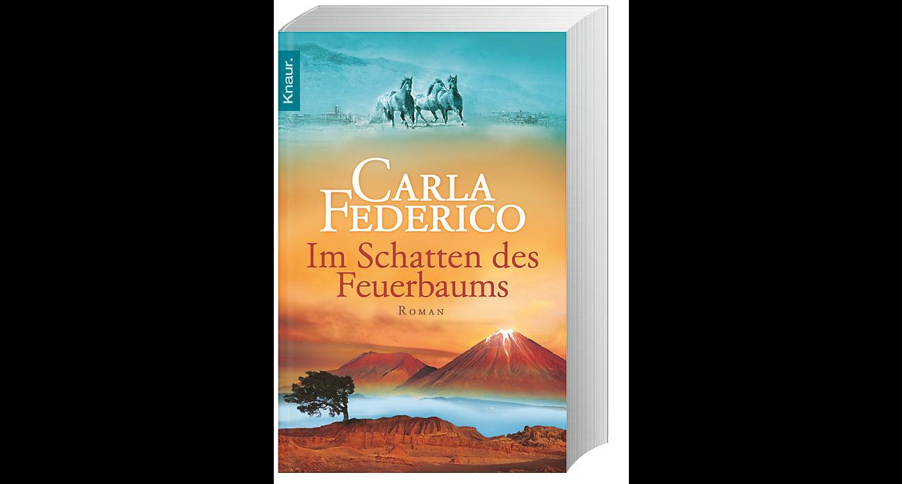 Carla Federico - Im Schtten des Feuerbaums