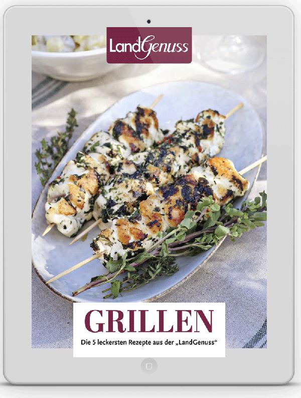 LandGenuss E-Book Grillen